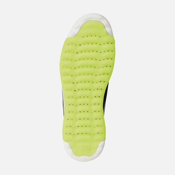Suola brevettata GEOX - Geox Sneakers Uomo Estate 2019
